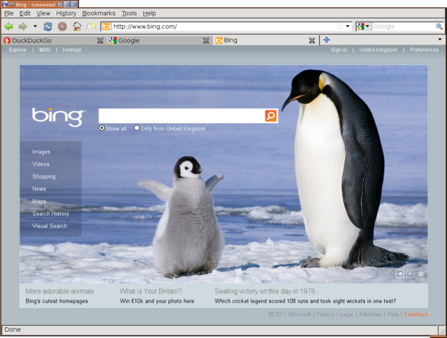 Bing and penguins, how interesting
