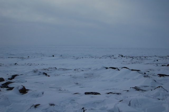 ancient inuit settlement
